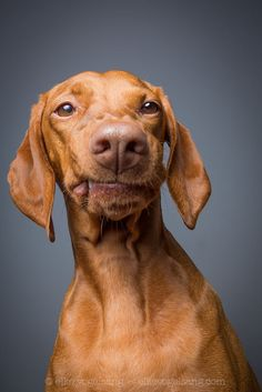 Urgh by Elke Vogelsang on 500px