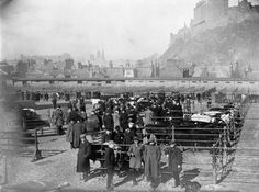 Collection Date 1907 Caption View of the old cattle market at Lauriston Place, Edinburgh, whilst in operation. Notes Copy of Edinburgh Photographic Society Survey of Edinburgh and District, Ward XIV George Square Old Town Edinburgh, Edinburgh Castle, Edinburgh Scotland, London Travel, Animal Design, Historical Photos, Cattle, Old Photos, Dolores Park