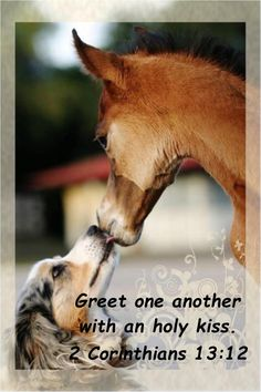 Greet one another with respect