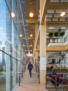 わずか1年で完成、英国で最も高い木造オフィス|日経BP社 ケンプラッツ