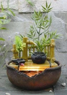 relaxing, peaceful and tranquil qualities of water, have inspired many ancient and modern garden designs. With this in mind, a very comprehensive range of varying size, style and priced products have been carefully selected for your attention Indoor Water Garden, Indoor Water Fountains, Indoor Fountain, Fountain Ideas, Water Gardens, Bamboo Fountain, Tabletop Water Fountain, Indoor Water Features, Meditation Garden