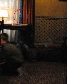 If you zoom in to the bottom right of the window, just above the desk, there is clearly a face. It was Dec. 18, 2011, and it was dark outside. The photographer used no flash, simply existing light. Nobody recognizes this face. Attempts have been made to reproduce effect and all have failed.