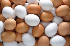 Блог о здоровье   Мифы и факты про сырые яйца: польза и вред натурпродукта