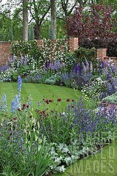 Blue Border Garden Campanula Iris Delphinium Anchusa by valarie Back Gardens, Small Gardens, Outdoor Gardens, City Gardens, Delphiniums, Garden Cottage, Garden Beds, Iris Garden, Purple Garden