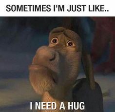 63 Trendy Ideas Funny Quotes For Friends Humor Hilarious Relatable Posts Crush Quotes Funny, Funny Animal Quotes, Super Funny Quotes, Animal Memes, Life Quotes, Crush Humor, Hair Quotes, Funny Animals, I Need A Hug