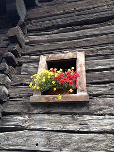 Wonderful rustic wooden window in Sondrio, Lombardy, Italy #window #wood #rustic