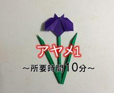 折り紙の菖蒲(あやめ)の簡単な作り方【立体・平面】