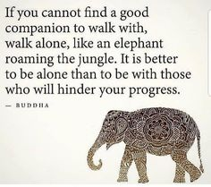 I love elephants. ・・・ Walk alone in life if you have toxic relationships around you 🙌🏽🙌🏽 💖 Repost🧘♀️ Via 🧘♂️for daily spiritual and positive peaceful messages 🔔 ‼️ ‼️ ‼️ Wise Quotes, Success Quotes, Everything Is Temporary, Better Alone, Motivational Posts, Spirit Science, Walking Alone, Spiritual Guidance, Business Inspiration
