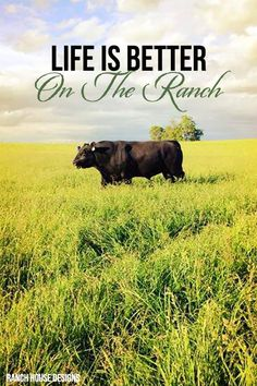 Live Is Better On The Ranch - Ranch House Designs Livestock Motivation