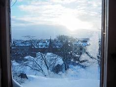 P1040679.jpgWinterSNowyViewHelsinkiFInlandWindow, winter, talvi, helsinki, suomi, finland, luonto, nature, aamusta iltaa, dawn to dusk, tammikuu, january, sää, weather, näkymä, view, landscape, maisema, kattojen ylle, rooftops,