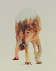 Best-Double-Exposure-Photography-Examples-2015-3