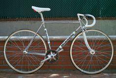 Italian Stallion - Boutique Cycles