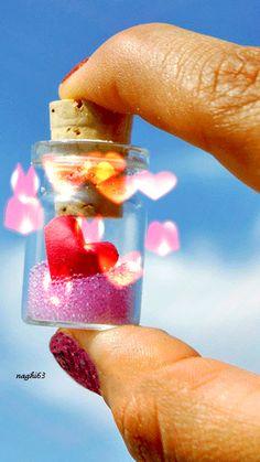 happy valentine wensen