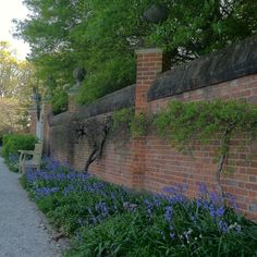 59 Best Colonial Williamsburg Gates And Fences Images