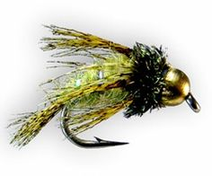 Bird of Prey Caddis larva/pupa - TCO Fly Fishing - Paul Weamer's Fly Box