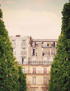 Rivoli - Paris Landscape Photography