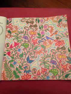 Primeiro desenho. lápis de cor aquarelável Faber Castell