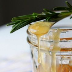 Rosemary Infused Honey. Since I just bought a Rosemary plant & was gifted with some raw, local honey. Perfect match. ;)
