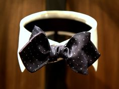 lnsee:    You should puff your bowtie like you do your squares.