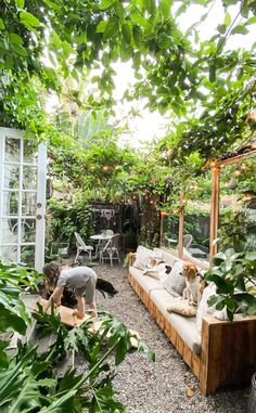 Before + After: Creating a Canopy of Vines — The Tiny Canal Cottage # courtyard Gardening Before + After: Creating a Canopy of Vines — The Tiny Canal Cottage Small Backyard Design, Small Backyard Gardens, Small Backyard Landscaping, Backyard Garden Design, Backyard Projects, Landscaping Ideas, Backyard Furniture, Small Garden Spaces, House Garden Design