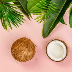 Our Argan Oil Hair Mask is high conditioning mask that provide nourishment to the hair, leaving your hair looking and feeling beautiful. Argan Oil Hair Mask, Hair Oil, Moroccan Hair Products, Rosehip Seed Oil, Organic Coconut Oil, How To Feel Beautiful, Hair Looks, Natural Skin Care, Shea Butter