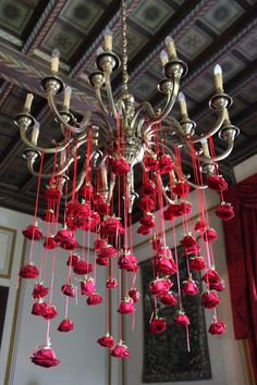 Hanging Roses - ideas for brides