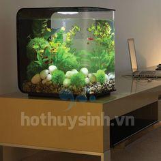 Những không gian làm việc, tiếp khách hoặc đa năng có thể dùng hồ cá thủy sinh để thư giãn, tạo không gian xanh, với tiếng nước róc rách,....