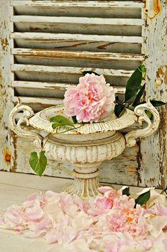 antique vase with shutter...