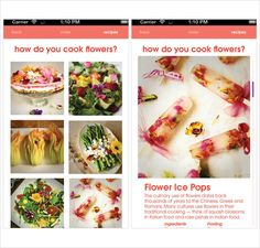 Buds-Edible-Flower-Food-Truck-logo-design-branding-Steph-Lin-9