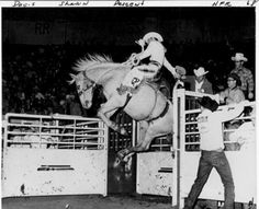(189) Facebook Rodeo Cowboys, Real Cowboys, Horse Pictures, Cool Pictures, Bucking Bulls, Farm Kids, Rodeo Life, Horse Saddles, Cowboy And Cowgirl