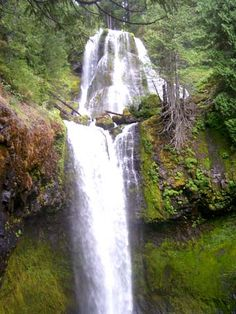 Ten Great Waterfall Hikes — Washington Trails Association