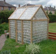 plastic bottle greenhouse