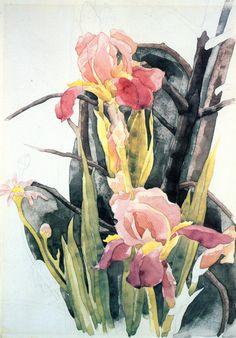 The Athenaeum - Flowers: Irises (Charles Demuth - )