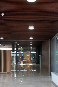 Hall-Lamas-de-madera-Agencia-Europea-OAMI-en-Alicante