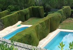 deep green sculpted hedges separate private gardens each containing a small swimming pool at Le Mas d'Aligny, a four-star hotel just outside of St Paul de Vence