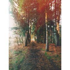 lucygweddings's photo on Instagram