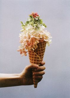 Amy Merrick's floral Ice Cream for Kinfolk Magazine. Shot by Parker Fitzgerald. Ice Cream Flower, Cream Flowers, Beautiful Flowers, Big Flowers, Flowers Garden, Exotic Flowers, Summer Flowers, Deco Floral, Arte Floral