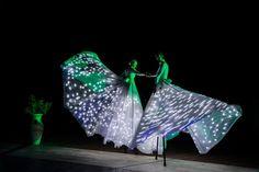The International Dance Theatre Company | Italy