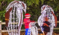 Zoo Lights: the phenomenon that turns zoos – and other wildlife spaces! – into visitor attractions at night Wildlife Tourism, Zoo Lights, Light Trails, Zoos, Time Art, Attraction, Fun Facts, Festive, Destinations