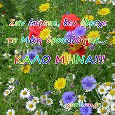 Εικόνες για τον Μάιο Καλώς μας ήρθε ο Μάιος και Καλή Πρωτομαγιά Plants, Plant, Planets