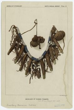 **American Indian. Necklace of Human Fingers / 1887-1888