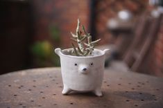 Flower Planters, Flower Pots, Incense Holder, Candle Holders, Stoneware, White Polar Bear, Zoo Keeper, Electronic Items, Egg Holder