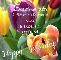 Happy Saturday ~
