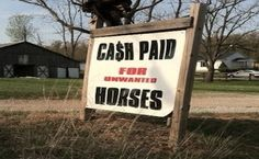 Secretary Vilsack Says Another Option Needed for Unwanted Horses  BY NEWS DESK | MARCH 21, 2013