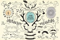 65 hand drawn vector elements! by GrafikBoutique on Creative Market