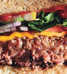 Cheddar Burgers With Balsamic Onions And Chipotle Ketchup Recipes ...