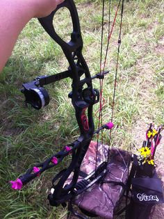 Hoyt Charger in pink