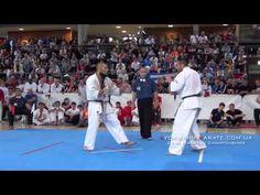 KARATE DAVID: Vídeo Final de Alejandro Navarro en el 29th European Kyokushin IKO
