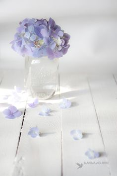 Light purple and beautiful white Beautiful Bouquet Of Flowers, Flowers Nature, Love Flowers, Wallpaper Iphone Cute, Flower Wallpaper, Wallpaper Backgrounds, Wallpapers, Lavender Color, Purple Aesthetic