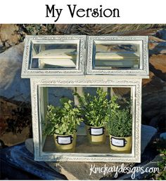 Picture Frames Solarium - cute mini greenhouse! My little chives plant & 2 others dried out this winter sitting on the windowsill with the AC vent blowing on them. :/